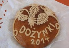 Dożynki Gminno - Powiatowe w Goczałkowicach  - Zdroju