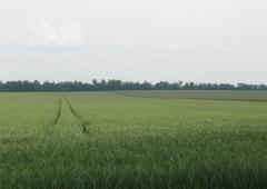Szkolenie chemizacyjne dla rolników z powiatu cieszyńskiego.