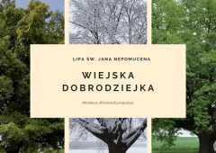 Głosowanie na Europejskie Drzewo Roku 2021. Lipa św. Jana Nepomucena