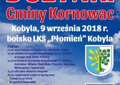 Zapraszamy na dożynki gminy Kornowac