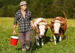 Ogłoszono nabór! Modernizacja gospodarstw rolnych - obszar A-D
