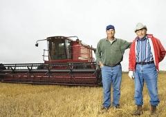 Ceny zbóż, a COVID-19